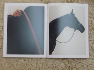Hermes La Maison Steidl Horses 1