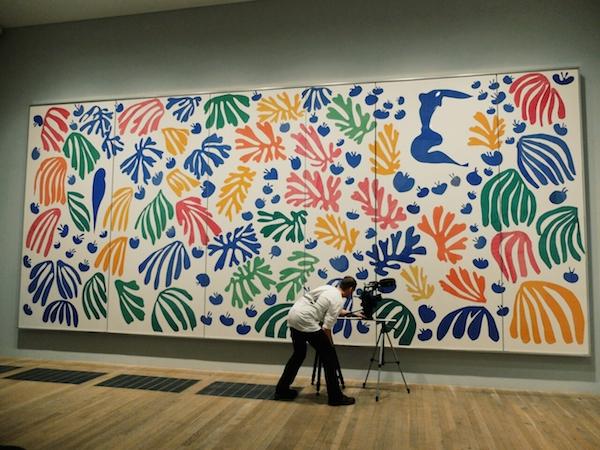 Matisse-cut-outs-Tate-Modern-Disneyrollergirl 15