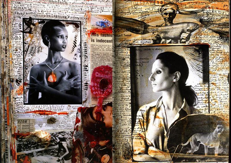 Peter Beard collage